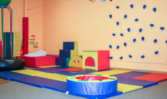 Photo of LAIPT gym/agility course/play mats